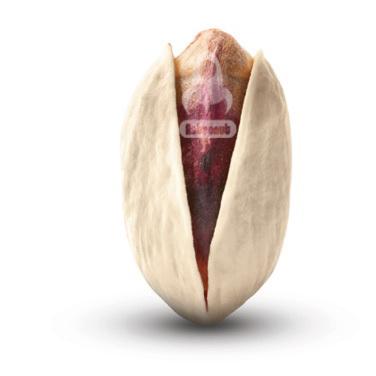 Ahmad Aghaei Pistachio Astronut