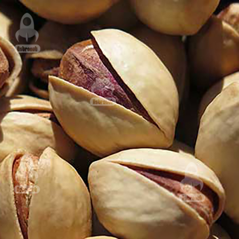 Round Pistachio Astronutfood