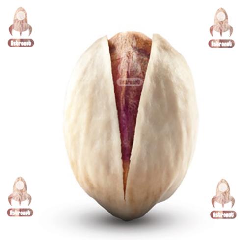 Round Pistachio Astronut