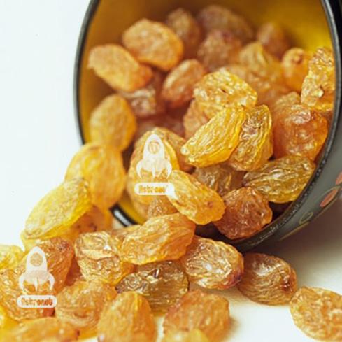 Sultana Light Malayer Raisins Astronut