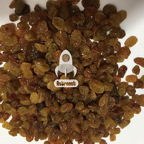 Sultana Dark- No9- Raisins Astronut